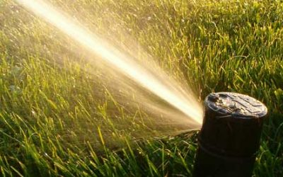 Keeping it Green: Sprinkler System Control